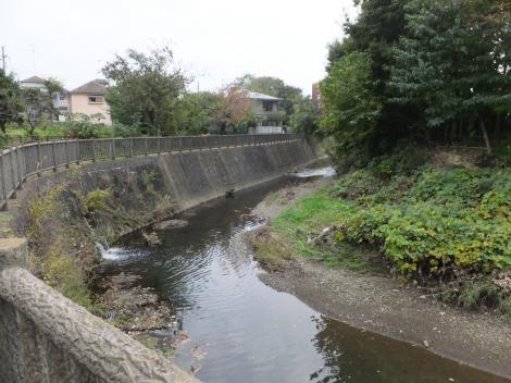 境川・横町橋下流