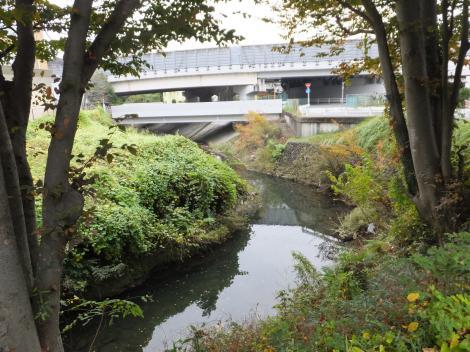 蛇行する境川・R16八王子バイパス上流