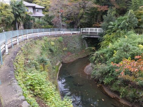 蛇行する境川・二州橋下流