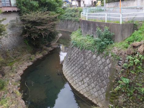 吉田橋より境川下流を望む