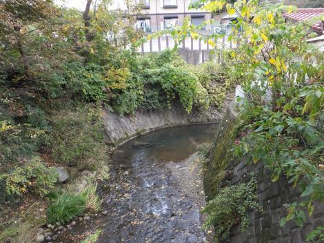境川・長寿橋より下流を望む