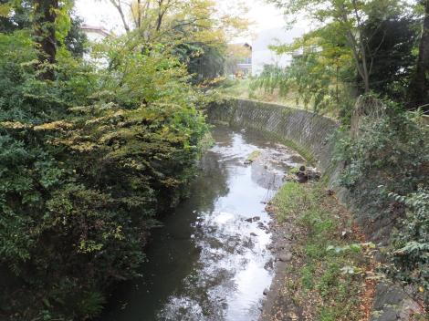 境川・長寿橋上流のU字型蛇行