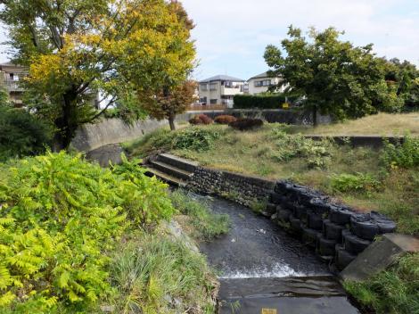 新田橋より境川下流を望む