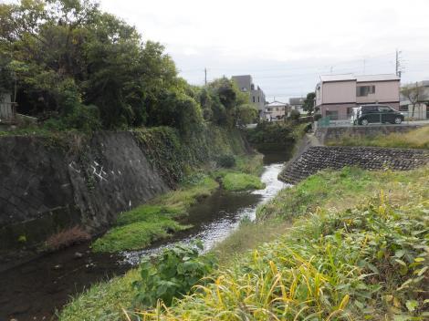 蛇行する境川・新田橋下流