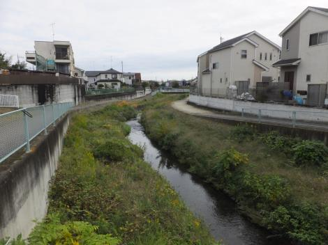 川島橋より境川下流を望む