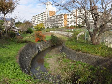 蛇行する境川・武蔵岡アパート前