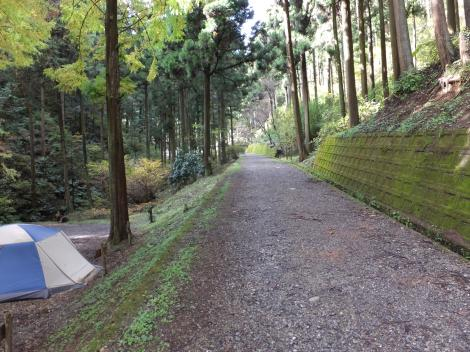 境川源流への道・テントサイト前