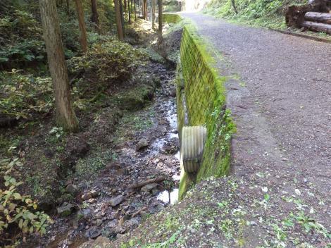 境川源流への道
