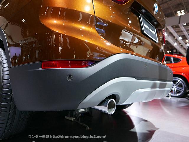 BMWX1_38.jpg