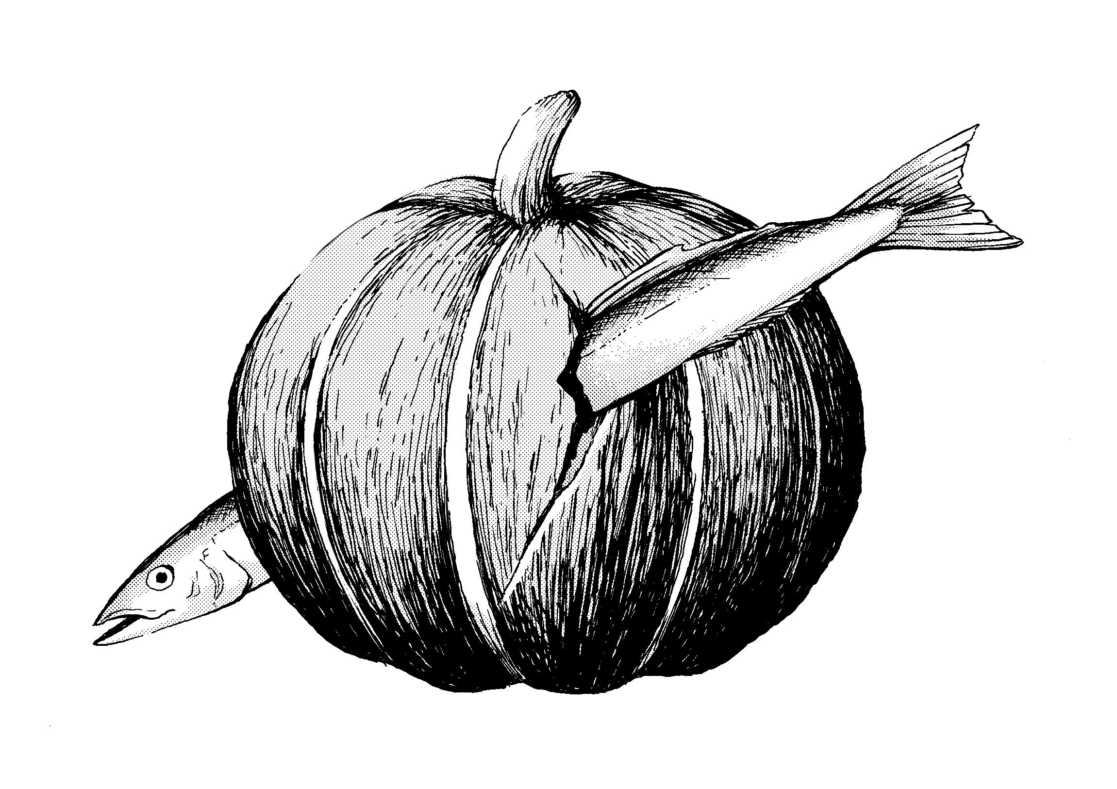 いわしかぼちゃ
