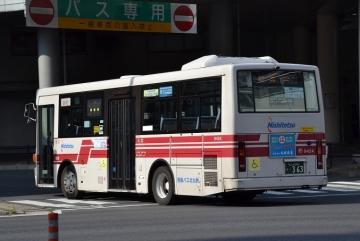 DSC_0240z.jpg