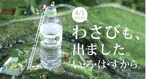 IROHASU.jpg