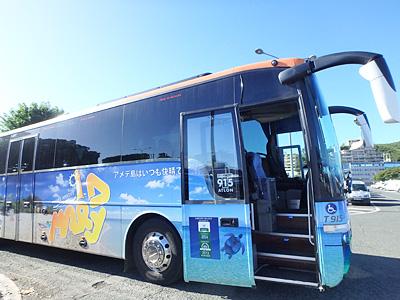 アメデ島へ行くツアーのバス