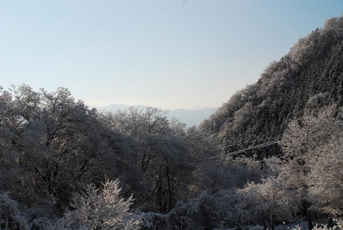 雪景色37