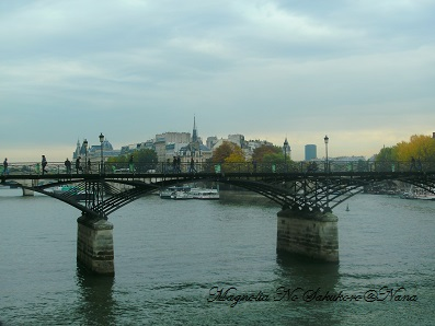 2110 2010 Paris (249)
