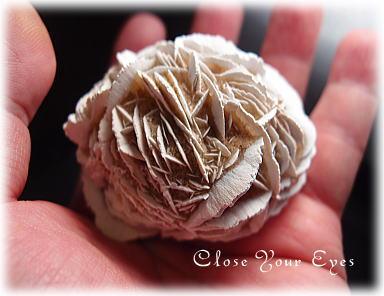 blog-desertrose03.jpg