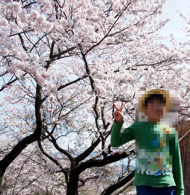 花見2016④