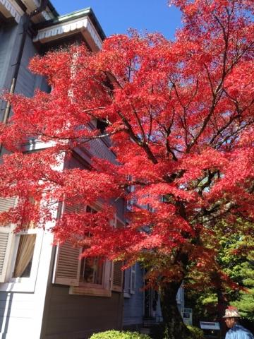 西郷従道邸の紅葉