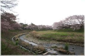 160403E 077平井川下流32