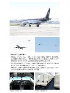 MRJ2.jpg