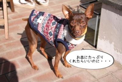 2016_02_07_9999_54.jpg