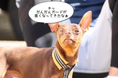2016_02_14_9999_34.jpg