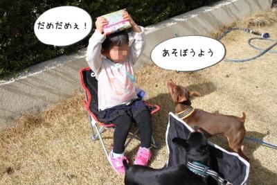 2016_02_14_9999_7.jpg