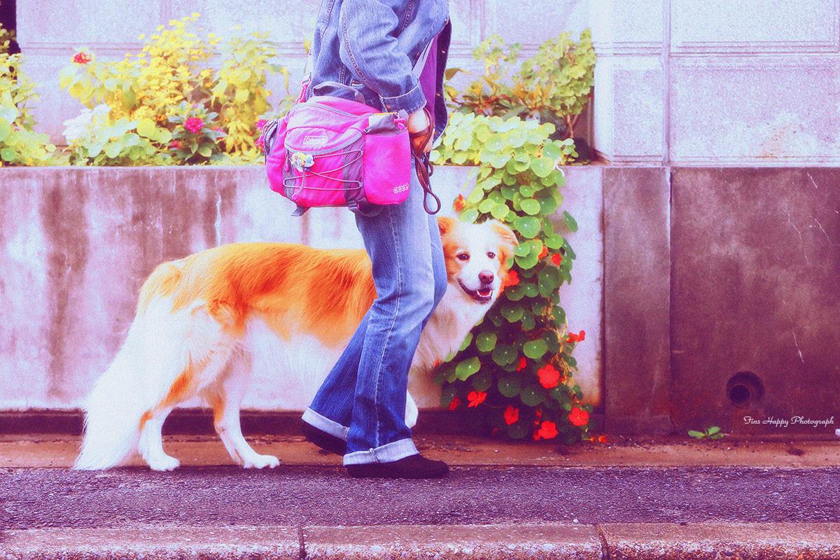 ママと歩くのは楽しい