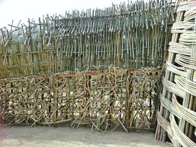 竹のドーム0316 (6)