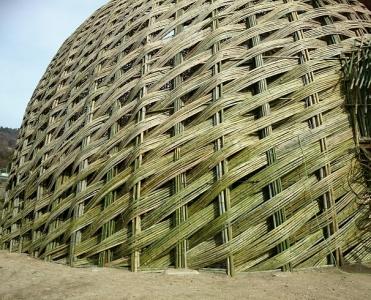 竹のドーム0316 (9)