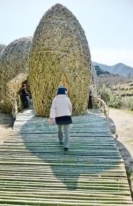 竹のドーム0322 (1)