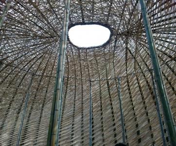 竹のドーム0316 (23)