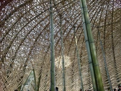 竹のドーム0316 (22)