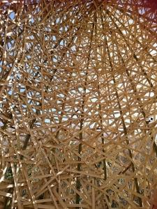 竹のドーム0322 (3)