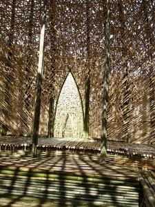 竹のドーム0322 (8)