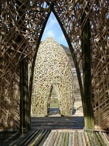 竹のドーム0322 (9)