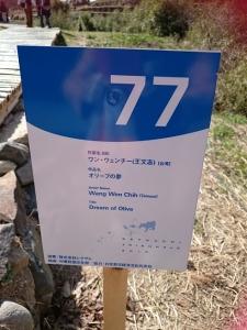 竹のドーム0322 (11)