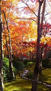 s-京都にて