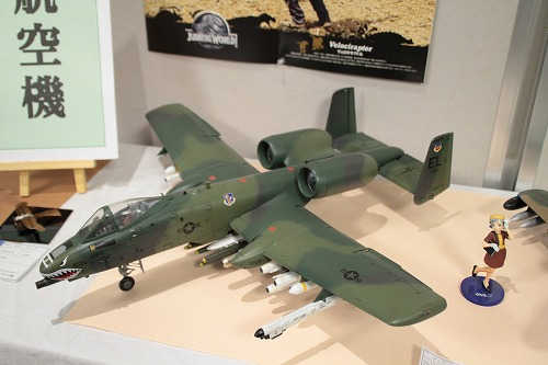 A-10 151024