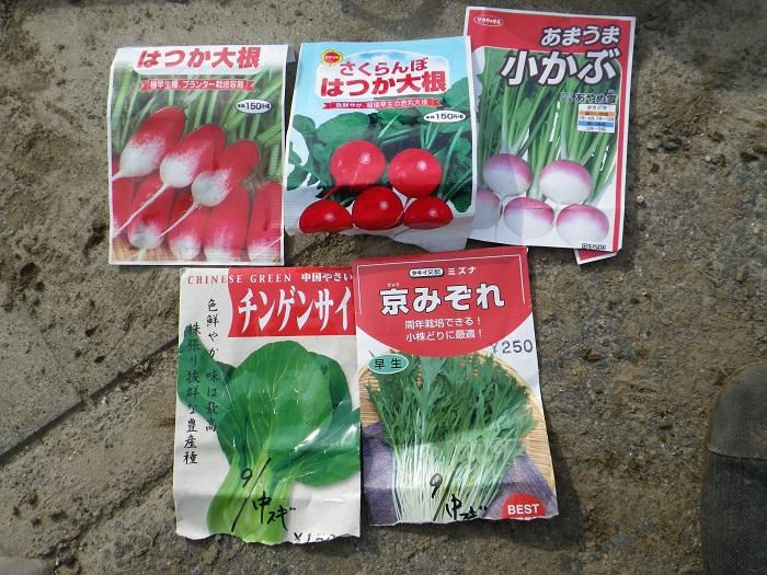種蒔き4_15_11_29