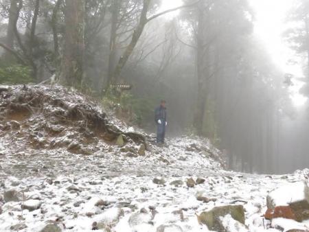 多良岳マンサク 045