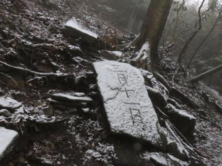 多良岳マンサク 064