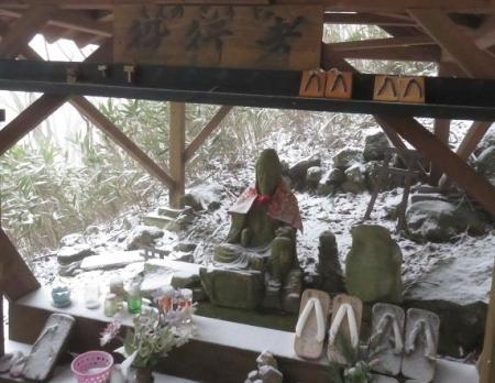 多良岳マンサク 059