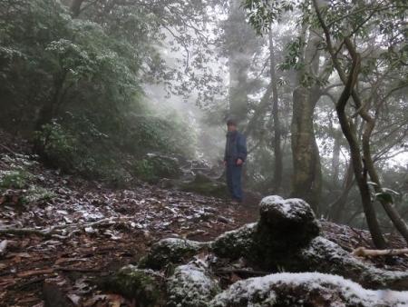 多良岳マンサク 069