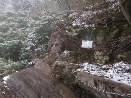 多良岳マンサク 081