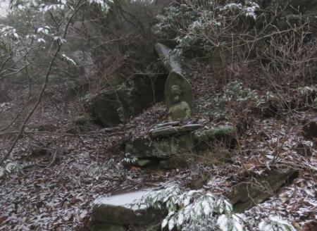多良岳マンサク 084