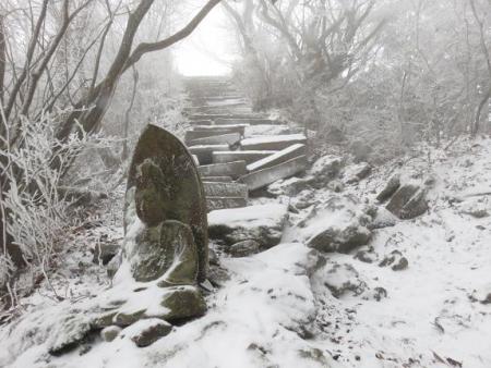 多良岳マンサク 106