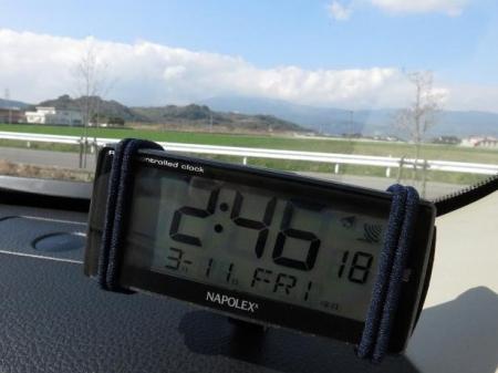 多良岳マンサク 176