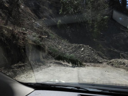 カラ迫岳サバノオ 107