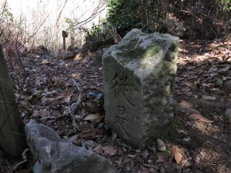 カラ迫岳サバノオ 132